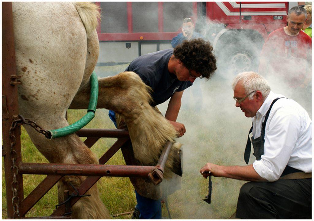 CEWE Photo Awards week 4: boerse en stadse tafereeltjes